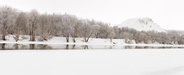 Floresta de inverno nas margens do rio don, no fundo das montanhas de giz