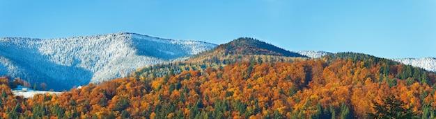 Floresta de montanha ensolarada de outono e primeira geada de outono no topo das árvores (na encosta da montanha). três tiros costuram a imagem.