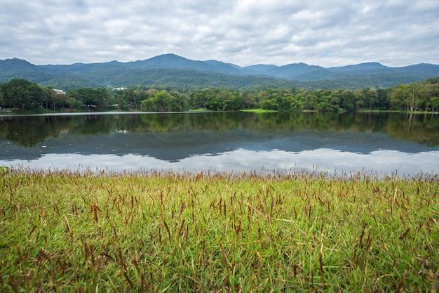 Floresta de montanhas com o fundo do céu azul do reservatório