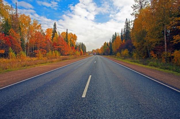 Floresta de outono colorida bela paisagem com estrada de asfalto e caminhões se movendo à distância