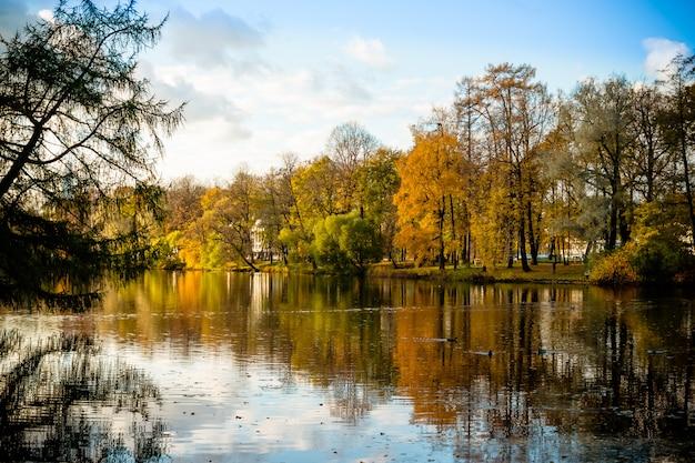Floresta de outono e lago no outono.