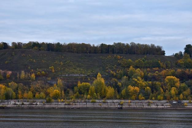 Floresta de outono na margem do rio