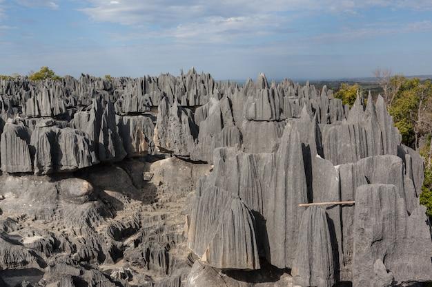 Floresta de pedra da reserva natural de tsingy de bemaraha, madagascar