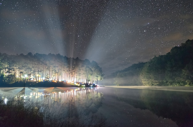 Floresta de pinheiros com brilho claro no reservatório à noite, pang oung, mae hong son, tailândia
