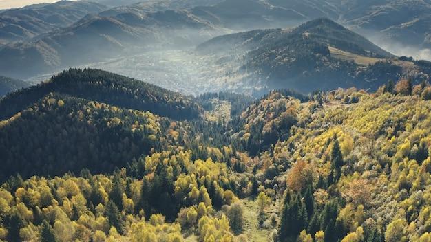 Floresta de pinheiros verdes aéreos em cumes montanhosos outono ninguém natureza paisagem vegetação grama em