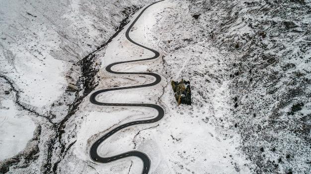 Floresta e estrada com neve