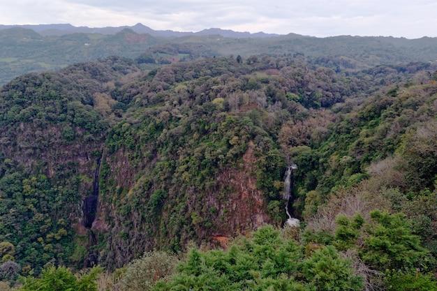 Floresta montanhosa com cachoeira durante o dia