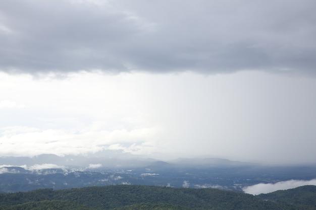 Floresta montanhosa e nevoeiro chuvoso
