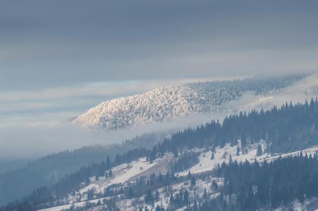 Floresta nas colinas cobertas de neve, paisagem de inverno