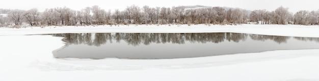 Floresta nas margens do rio don com gelo