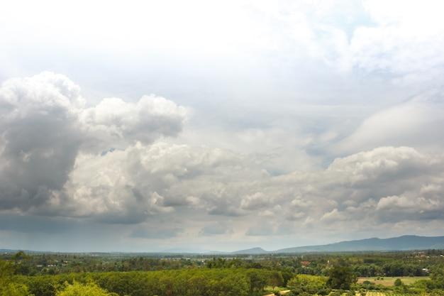 Floresta nebulosa e verde chuvosa em um dia de iluminação fraca. escorregadio nublado no dia da penumbra, paisagem de chuva.