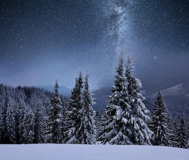 Floresta no cume de uma montanha coberta de neve. via láctea em um céu estrelado. noite de inverno de natal.