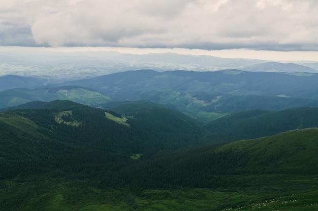 Floresta. paisagem de floresta de montanha verde. floresta de montanha enevoada. fantástica paisagem de floresta. floresta de montanha na paisagem de nuvens. floresta nevoenta. paisagem da floresta de montanha. floresta escura na paisagem de neblina.