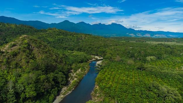 Floresta tropical no distrito de aceh besar, província de aceh