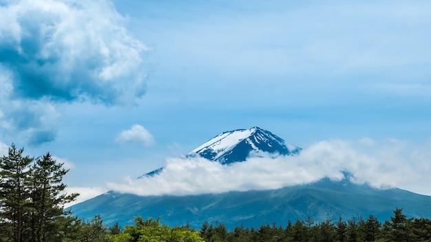 Floresta verde fresca e vista bonita mt.fuji com neve, céu azul no verão em yamanashi, japão.
