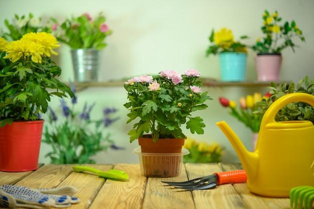Floricultura com regador de flores e mesa de madeira