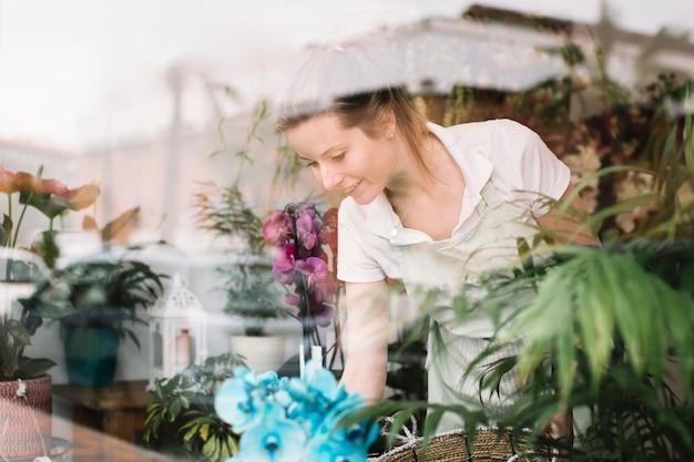 Florista bonito organizando a janela da loja