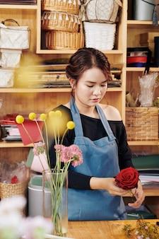 Florista cortar folhas de rosa