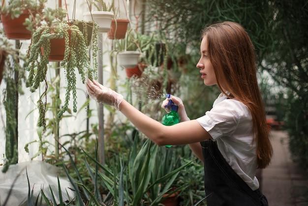 Florista cuida das flores da casa em estufa