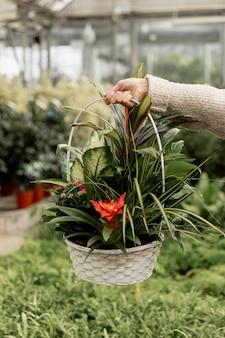Florista de close-up segurando cesta de flores