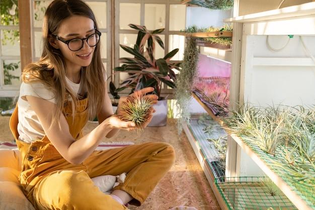 Florista feliz segurando uma planta de tilandsia sentada em um quarto aconchegante, jardinagem doméstica