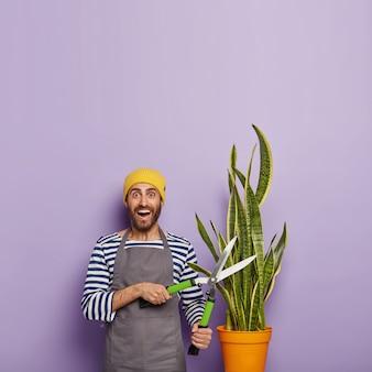 Florista feliz vestida com roupas de trabalho, planta de poda de cobra, tesoura de jardinagem, expressão de rosto alegre e alegre