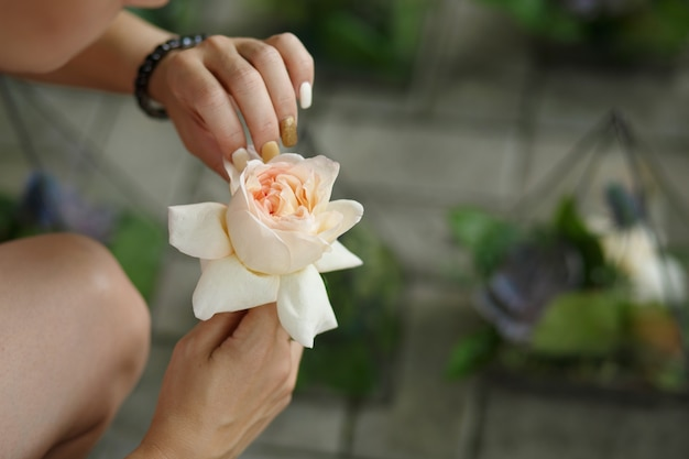 Florista feminina desembrulhar rosa fresca e colocar em vidro florarium