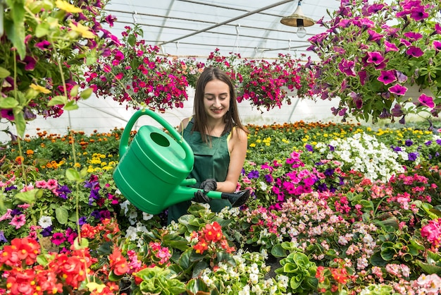 Florista feminina regando flores diferentes em estufa