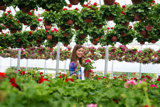 Florista linda e linda com sorriso cheio de dentes andando pelo jardim de flores coloridas segurando vasos de plantas