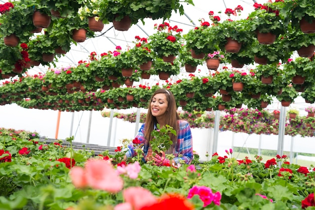 Florista sorridente e feliz organizando flores para venda no jardim da estufa