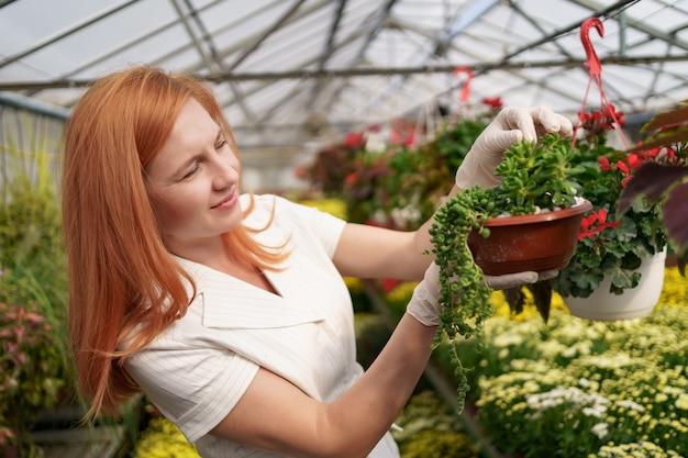 Florista sorridente em seu viveiro inspecionando flores em vasos enquanto cuida das plantas do jardim na estufa
