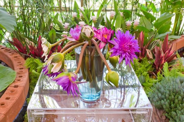 Floristry flores de lótus cor-de-rosa e roxas no vaso de vidro.