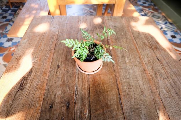 Flowerpot na mesa de madeira, fundo para hotel resort vintage