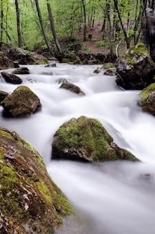 Fluxo com cascata e pedras cobertas de musgo