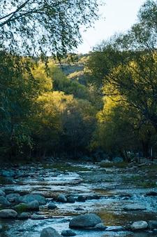 Fluxo de água correndo na bela paisagem de outono