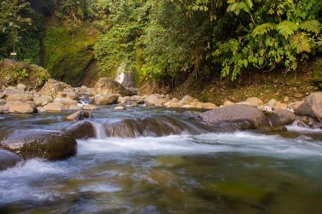 Fluxo de água na floresta verde. bengkulu, indonésia