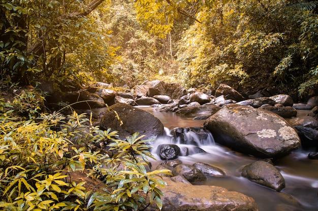 Fluxo de cachoeira fluindo na floresta de outono na província de nan, tailândia