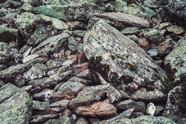 Fluxo de pedregulhos multicoloridos. pedra solta perto acima. água sob pedras espalhadas aleatoriamente. fundo detalhado surpreendente de pedregulhos das montanhas com musgos e líquenes. textura natural do terreno da montanha.