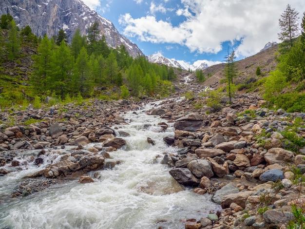 Fluxo de rio de montanha através da floresta. bela paisagem alpina com água azul no rio rápido. poder majestoso natureza das terras altas.