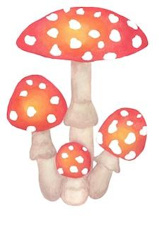 Fly agaric família de cogumelos venenosos ilustração infantil em aquarela separada em um branco
