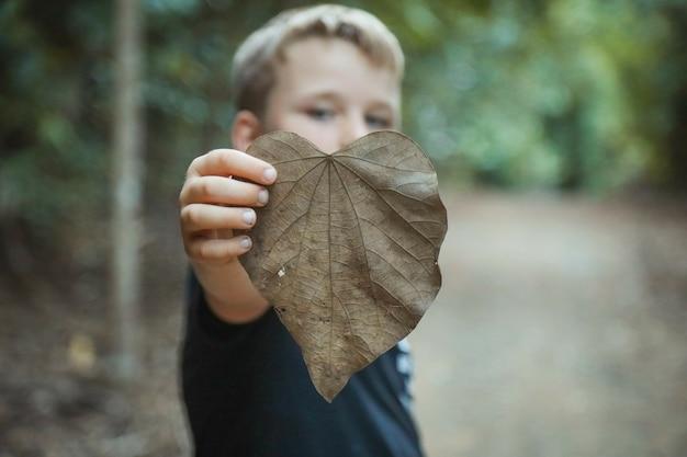 Foco seletivo de garotinho loiro segurando uma folha