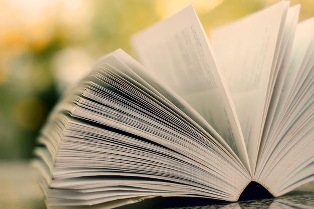 Foco seletivo de livro aberto sobre fundo verde natural turva