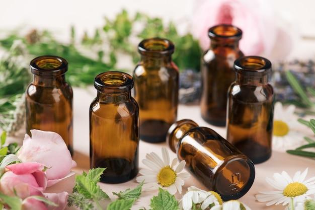 Foco seletivo do conceito de cosméticos naturais e ervas curativas