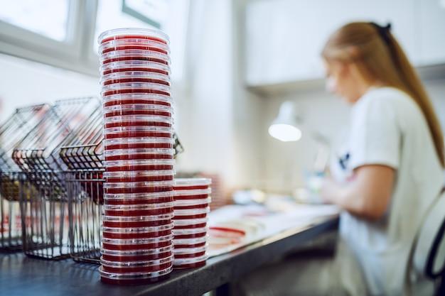 Foco seletivo em placas de petri na mesa do laboratório.