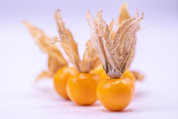 Foco seletivo fechar frutas de groselha do cabo
