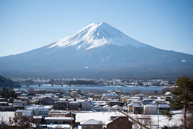 Foco seletivo na montanha fuji