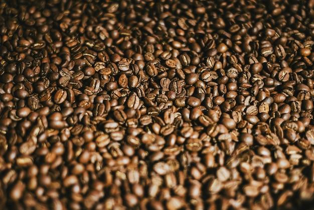 Foco seletivo na torrefação de grãos de café para cafés especiais
