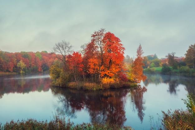 Foco suave. floresta de outono em uma ilha no meio de um lago na névoa da manhã. paisagem de outono mística manhã com névoa sobre o lago.