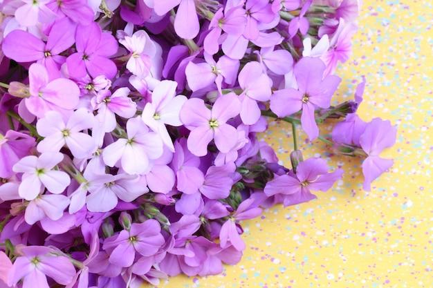 Foco suave seletivo de noite de flores violeta