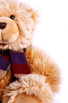 Fofo urso de pelúcia